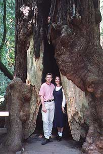 Marcus and Britta inside a redwood tree